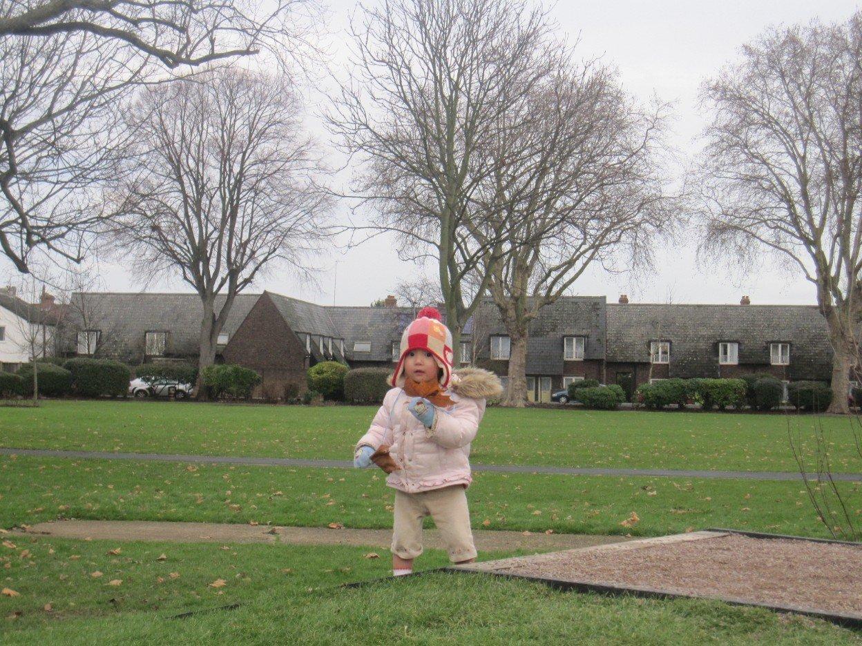 転勤中の家の横の公園です。英国に住んで居ました。