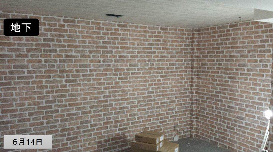 地下室(リノベーション中) /写真2