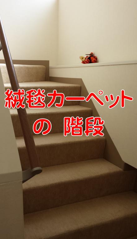 絨毯カーペットの階段
